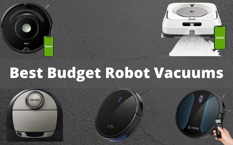 Best Budget Robot Vacuums for Pet Hair