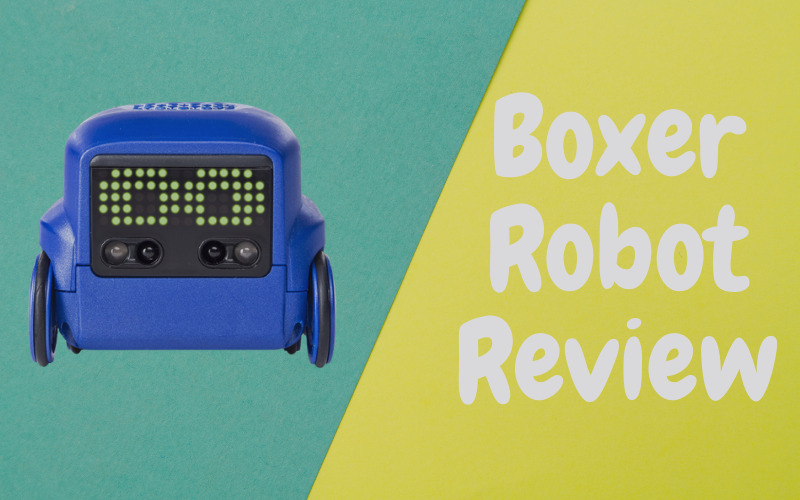 Boxer Robot Review [An Entertaining Gadget]