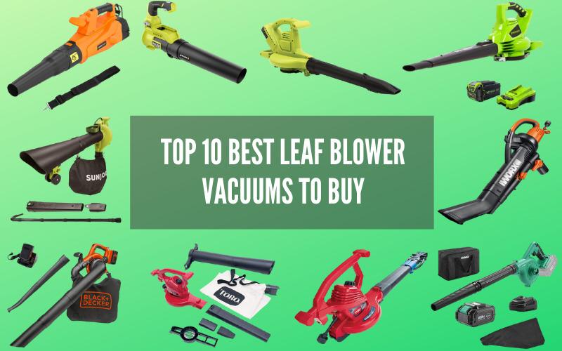 Top 10 Best Leaf Blower Vacuums to Buy in 2021
