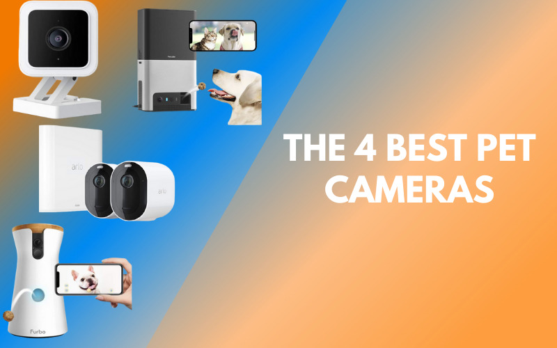 The 4 Best Pet Cameras: Keep an Eye on your Dog's Activity